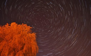 Star_Trail_above_Beccles_-_geograph.org.uk_-_1855505