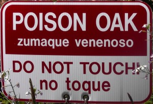 Warning Sign - Poison Oak